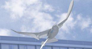 الصين تطلق طيور روبوتية لتعزيز المراقبة والتجسس الحكومي