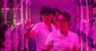 مدراس صينية تستخدم ملابس مزودة بتقنية الذكاء الاصطناعى لتتبع الطلبة