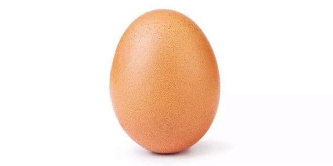 كيف حصدت صورة بيضة إعجابات تخطت 20 مليون بإنستغرام؟