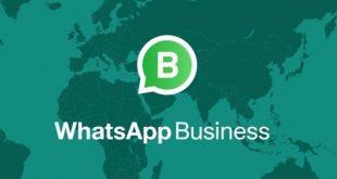 أخيرا تطبيق WhatsApp Business متاح الأن لنظام التشغيل ios