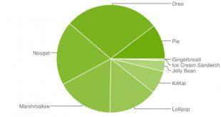 بالأرقام .. كيف يعتمد المستخدمون على أنظمة جوجل