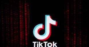 كيفية تنزيل البيانات وسجل النشاط في TikTok