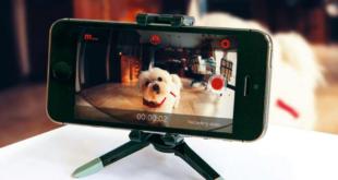 كيف يمكنك تحويل هاتفك القديم إلى كاميرا أمنية مجانًا؟