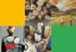 تطبيق Arts & Culture من جوجل يأتي بميزة تحويل الصور الشخصية إلى أعمال فنية