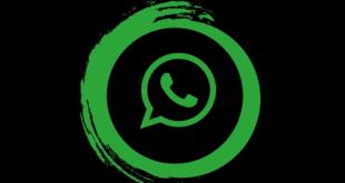 3 طرق للتراسل مع أحدهم في واتساب دون إضافته أولًا كجهة اتصال