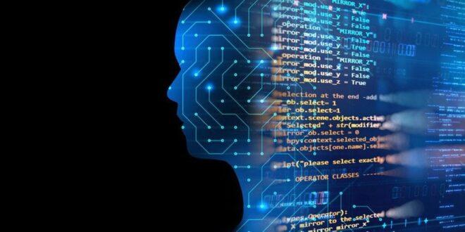 البرمجة من أكثر المجالات تحقيقًا للأرباح اليوم .. لكن ما الذي يفعله المبرمج حقًا؟
