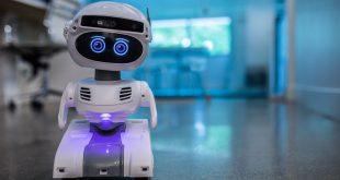 الروبوتات يمكن أن تنتشر على كوكب الأرض خلال 15 عاما فقط