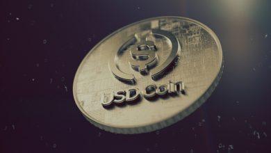 تعرف على عملة USD Coin الرقمية المستقرة: وسيلة الدفع الإلكتروني الأسرع نمواً اليوم