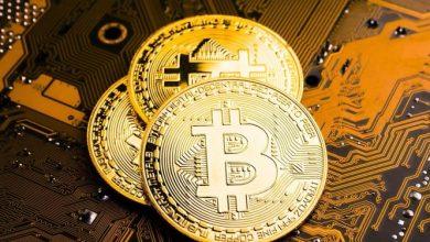 ما هي اشهر انواع العملات الرقمية؟